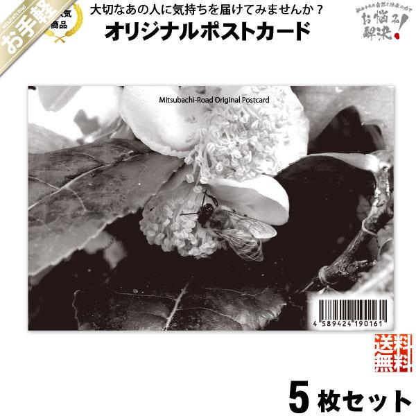 【お手軽 / 5個セット】ポストカード 茶の花と共に (100×148mm)【送料無料】