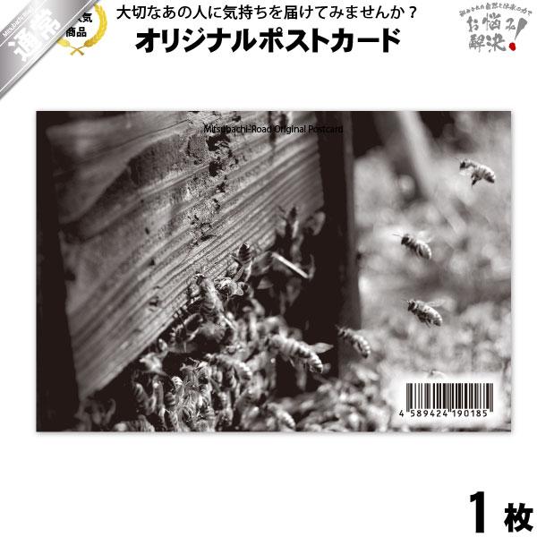 ポストカード 忙しいみつばち達 (100×148mm)