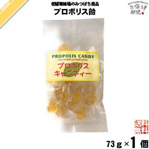 【お手軽】プロポリス飴 (73g)【送料無料】