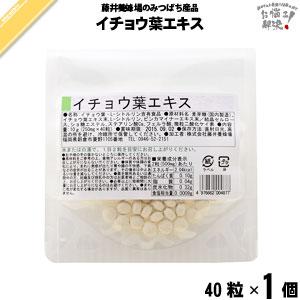 イチョウ葉エキス (40粒)【5250円以上で送料無料】