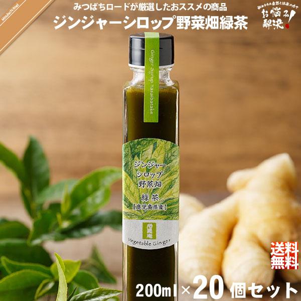 【20個セット】ジンジャーシロップ野菜畑 緑茶 鹿児島産 (200ml)【送料無料】