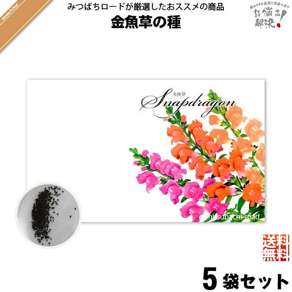 【お手軽 / 5個セット】金魚草の種(1袋)【送料無料】