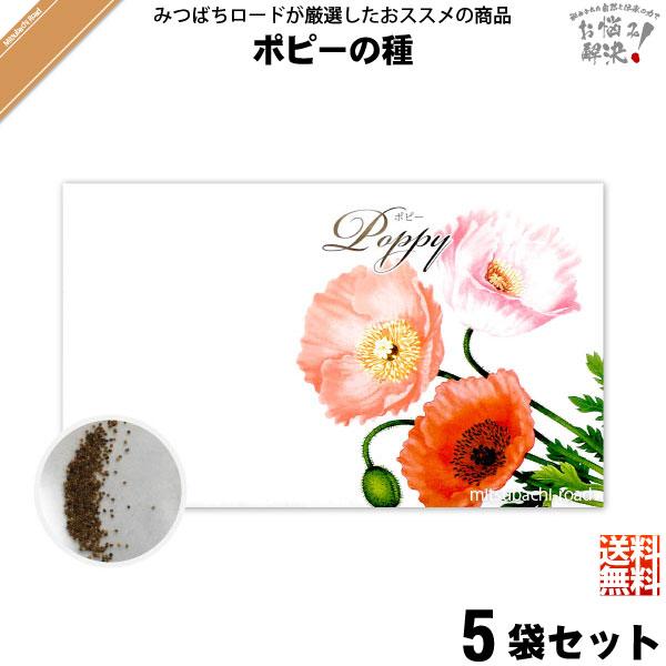 【お手軽 / 5個セット】ポピーの種(1袋)【送料無料】