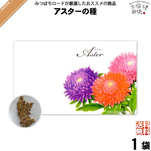 【お手軽 200円】アスターの種(1袋)【送料無料】