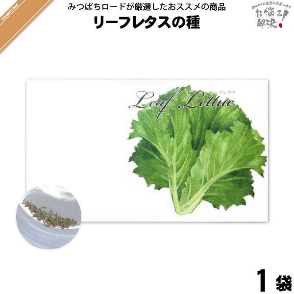 リーフレタスの種(1袋)