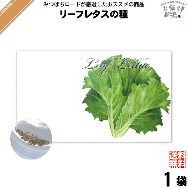 【お手軽 200円】リーフレタスの種(1袋)【送料無料】