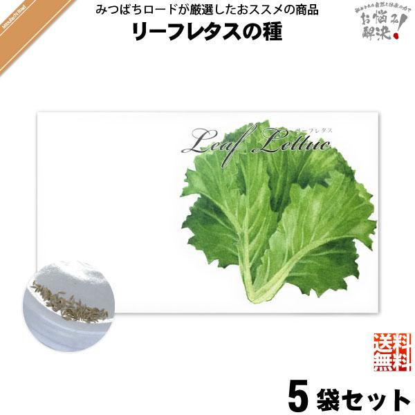 【お手軽 / 5個セット】リーフレタスの種(1袋)【送料無料】