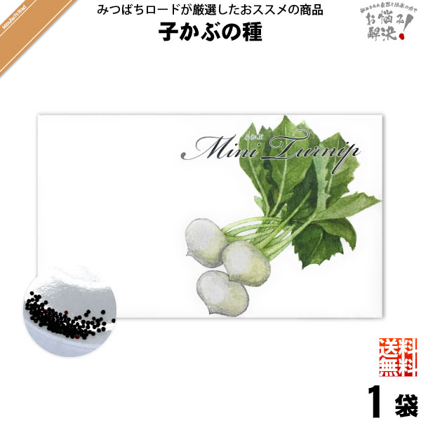 【お手軽 / 5個セット】小かぶの種(1袋)【送料無料】
