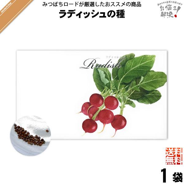 【お手軽 200円】ラディッシュの種(1袋)【送料無料】