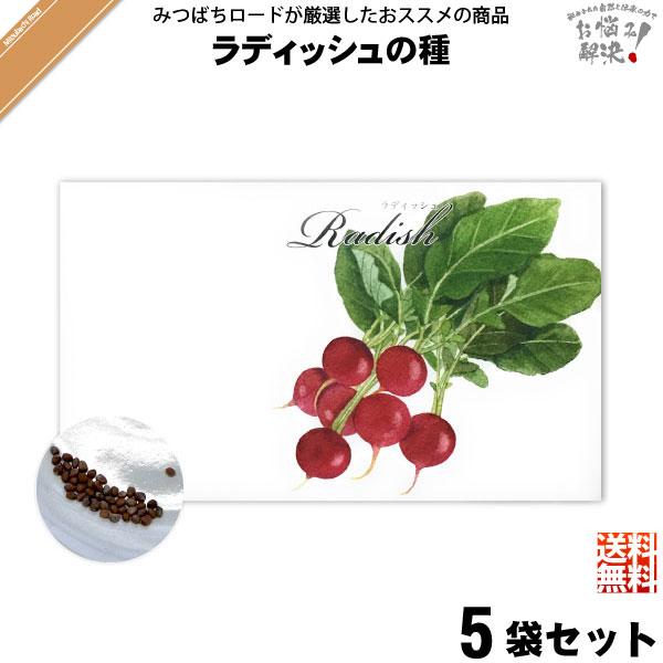 【お手軽 / 5個セット】ラディッシュの種(1袋)【送料無料】【1000円】