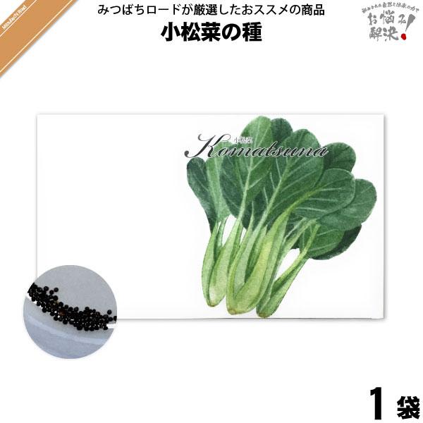 小松菜の種(1袋)【5250円以上で送料無料】