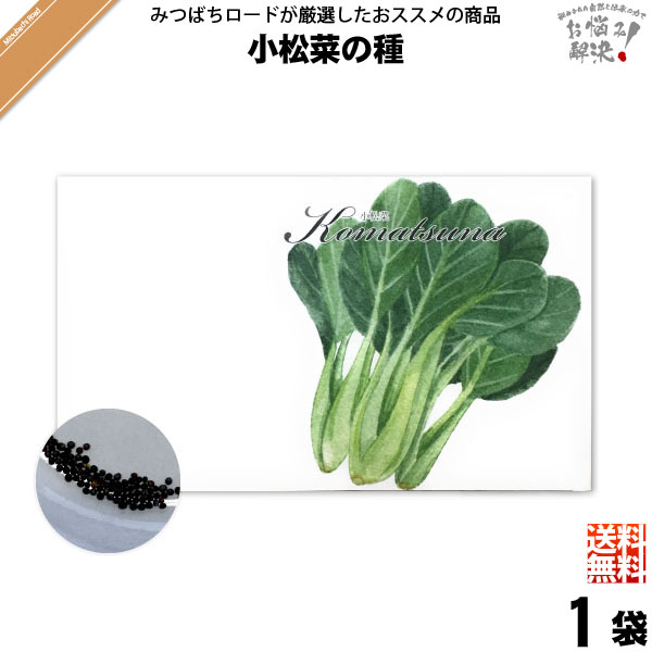 【お手軽 200円】小松菜の種(1袋)【送料無料】