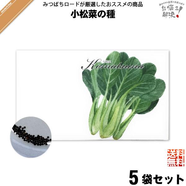 【お手軽 / 5個セット】小松菜の種(1袋)【送料無料】【1000円】