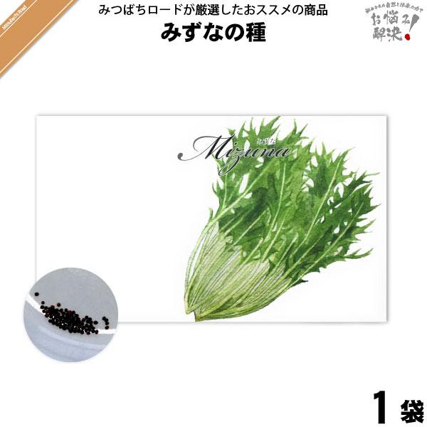 みずなの種(1袋)【5250円以上で送料無料】