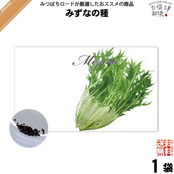 【お手軽 200円】みずなの種(1袋)【送料無料】