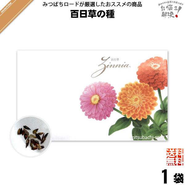 【お手軽 200円】百日草の種(1袋)【送料無料】