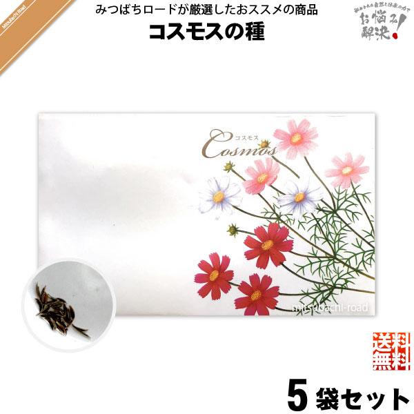 【お手軽 / 5個セット】コスモスの種(1袋)【送料無料】【1000円】