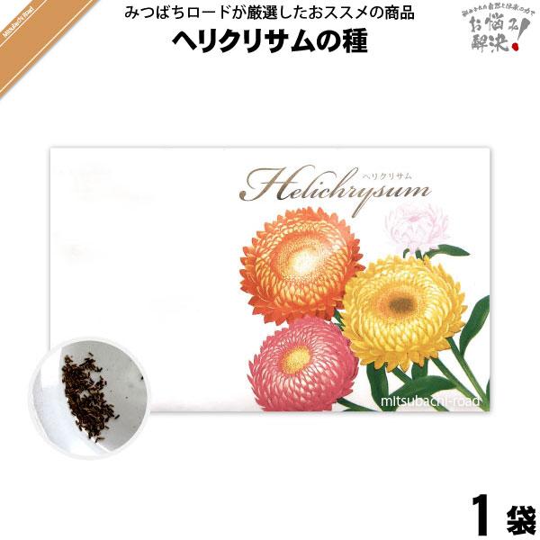 ヘリクリサムの種(1袋)