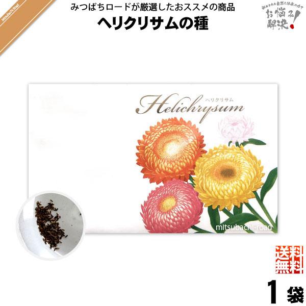 【お手軽 200円】ヘリクリサムの種(1袋)【送料無料】