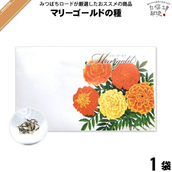 マリーゴールドの種(1袋)【5250円以上で送料無料】