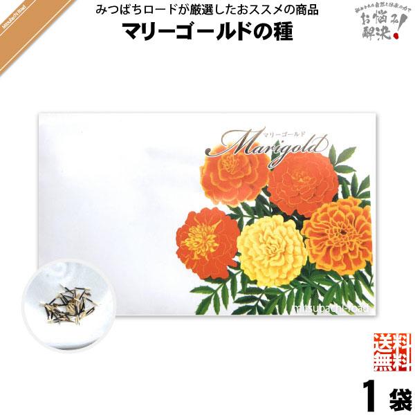【お手軽 200円】マリーゴールドの種(1袋)【送料無料】