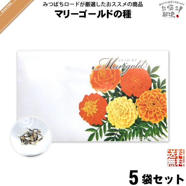 【お手軽 / 5個セット】マリーゴールドの種(1袋)【送料無料】【1000円】