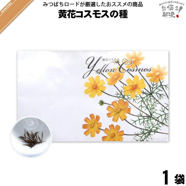 黄花コスモスの種(1袋)