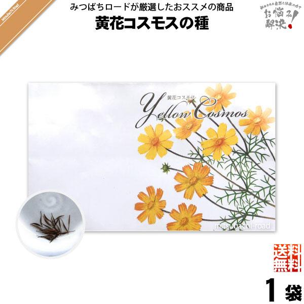 【お手軽 200円】黄花コスモスの種(1袋)【送料無料】