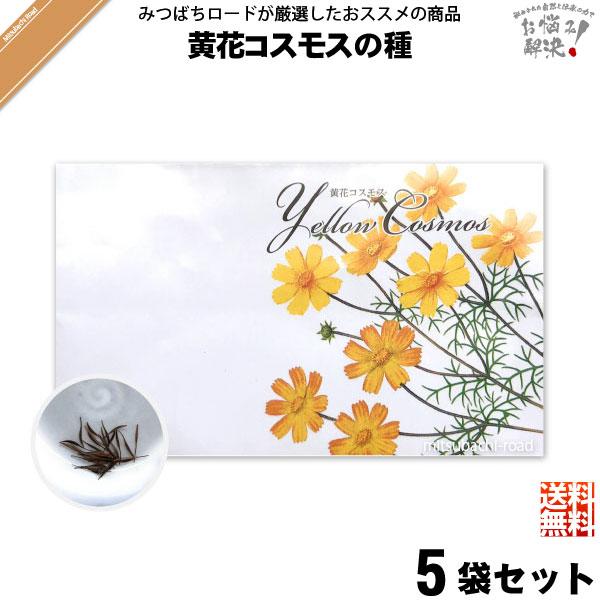 【お手軽 / 5個セット】黄花コスモスの種(1袋)【送料無料】【1000円】