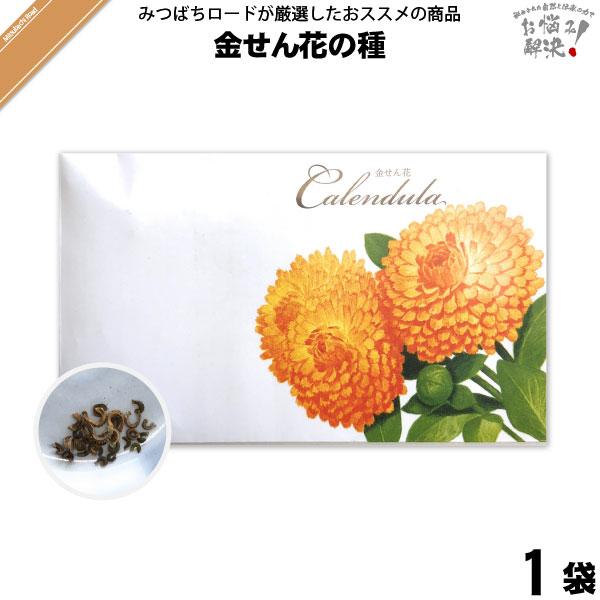 金せん花の種(1袋)【5250円以上で送料無料】