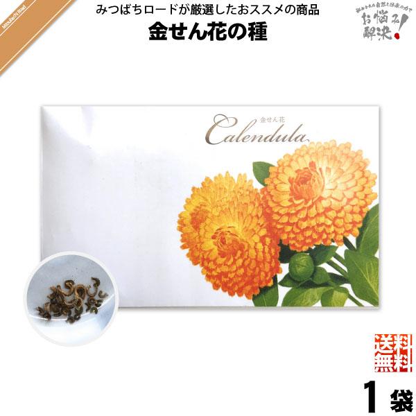 【お手軽 200円】金せん花の種(1袋)【送料無料】