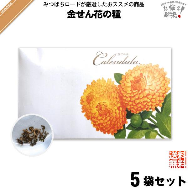 【お手軽 / 5個セット】金せん花の種(1袋)【送料無料】【1000円】