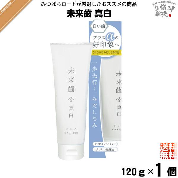 【お手軽】 未来歯 真白 歯磨き粉 (120g) 【送料無料】