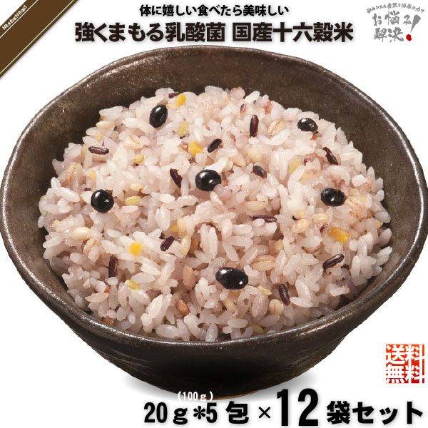 【12個セット】強くまもる乳酸菌 国産 十六穀米 (20g×5包)【送料無料】