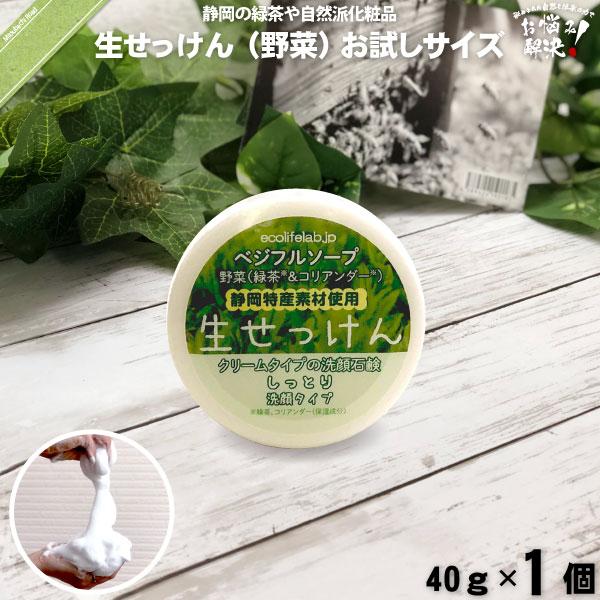 旬の 生せっけん VEG 野菜 (40g)【5250円以上で送料無料】