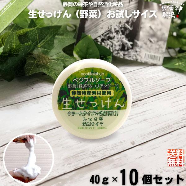 【お手軽 / 10個セット】旬の 生せっけん VEG 野菜 (40g)【送料無料】