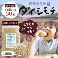 ダイシモチ麦
