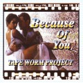 【SALE】【セール商品】TAPE WORM PROJECT / Because Of You [国内版MIXCD]