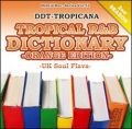【SALE】【視聴あり】DJ DDT-Tropicana / Tropical R&B Dictionary Orange Edition -UK Soul Flava- [国内盤MIXCD]