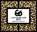 【1枚組】 I LUV SLOW JAM BEST / DJ YAMATO 【[輸入盤MIX CD】
