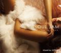 【1枚組】 ALCOHOLIC MUSIC ver. SOUL JAM -Neo Soul R&B- 【[国内盤MIX CD】