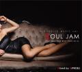 【1枚組】 ALCOHOLIC MUSIC ver. SOUL JAM -Neo Soul R&B BEST 2000-2010-/ HIPRODJ 【[国内盤MIX CD】