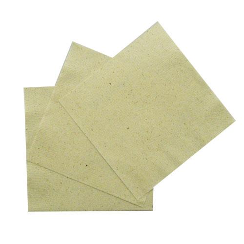 4折ナプキン(茶殻入)250×250mm 10000枚