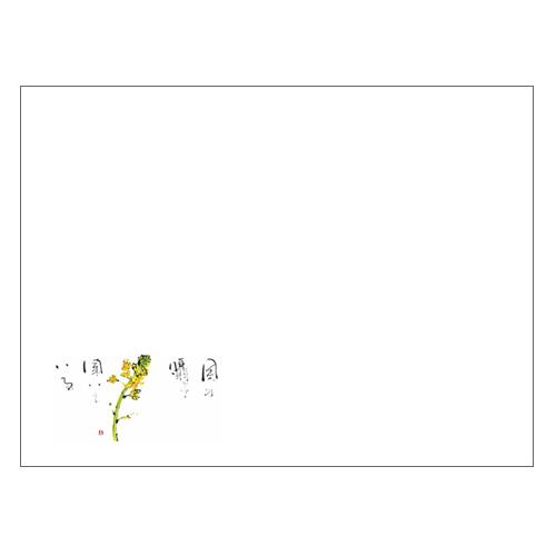 ランチョンマットV957(菜の花)1000枚