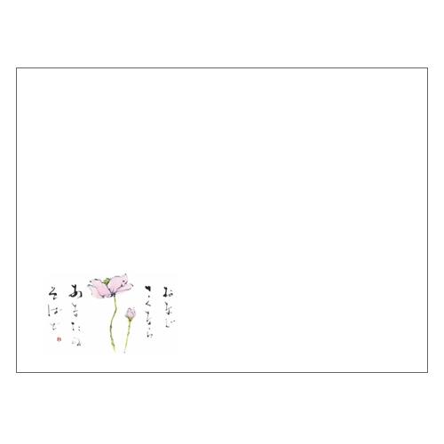 ランチョンマットV968(しゅうめいぎく)1000枚