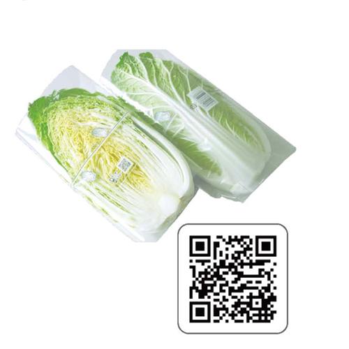 1/4白菜カット300×400SFフィルム 5000枚