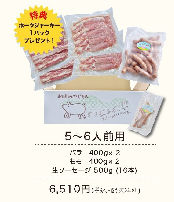 みやじ豚BBQセット5~6人前