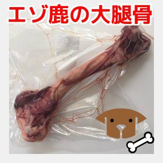 【犬用 生肉】エゾ鹿 大腿骨 1本 ペット 生肉 おやつ ごはん(大人気鹿肉)