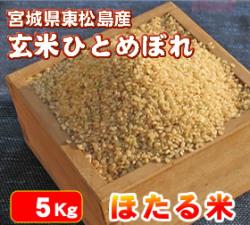 【送料無料・代引手数料無料】安全・安心でおいしい「ほたる米ひとめぼれ」 玄米5Kg