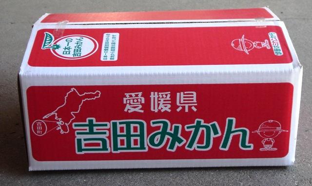 みかん箱5キロ